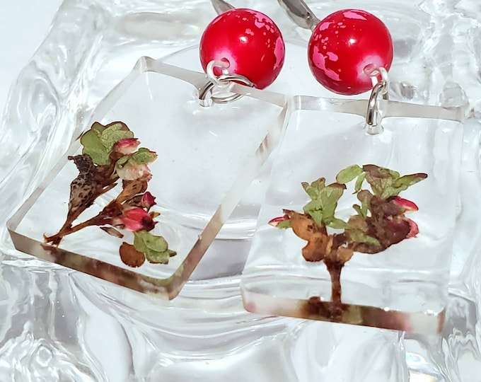 Featured listing image: Flower window earrings with stainless steel hooks and real pressed flora from the arctic