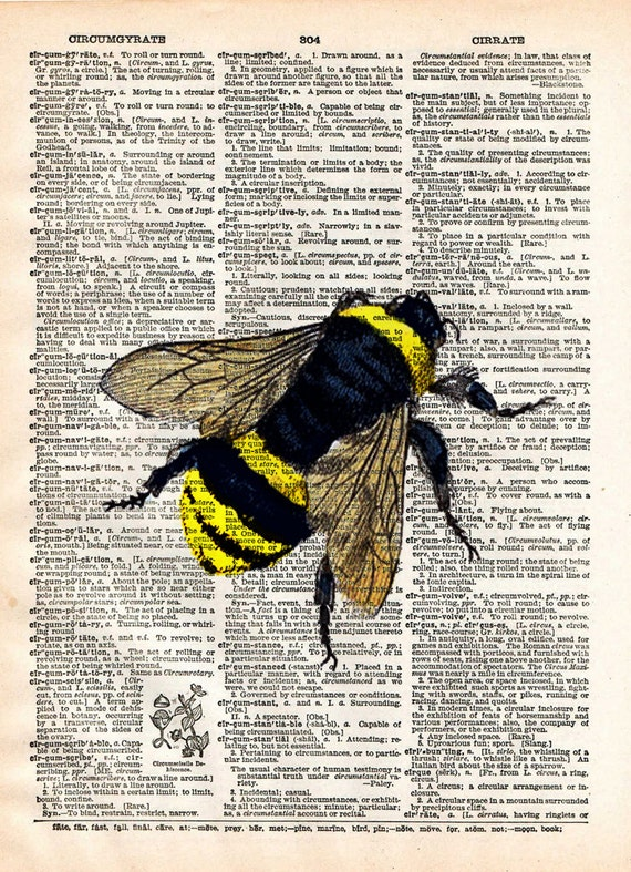 Bumblebee Insect Drawing Bee Art Print Dictionary Page