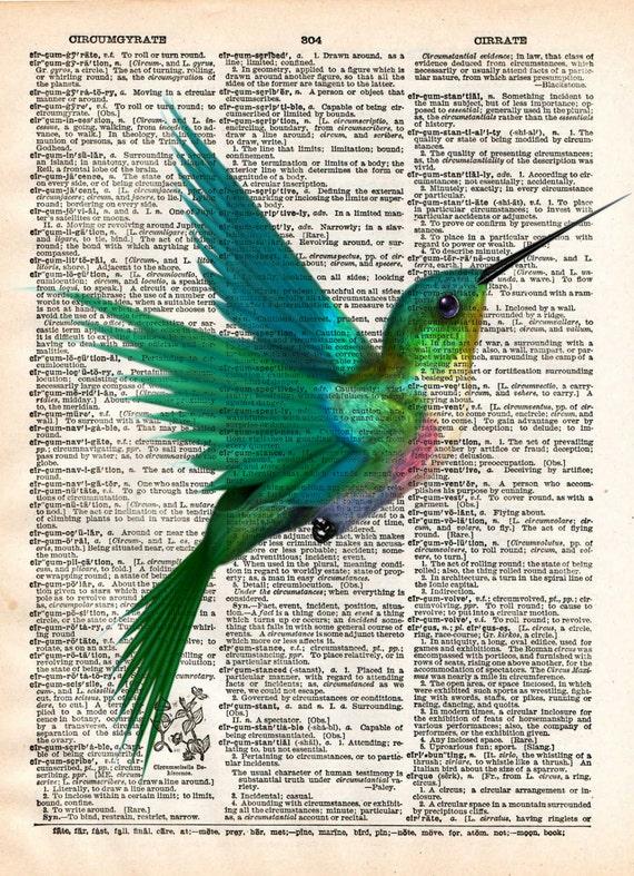 Hummingbird Art Drawing
