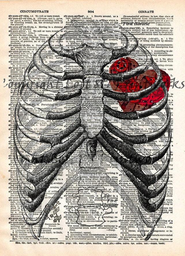 Corazón de un reloj Steampunk caja torácica anatomía vintage   Etsy