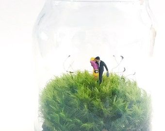 SALE // Down to Business Moss Terrarium, Glass Terrarium, DIY Terrarium Kit