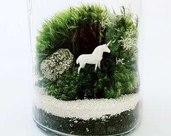 Gemstone Unicorn Terrarium Kit, Glass Terrarium, Moss Terrarium, DIY Terrarium Kit