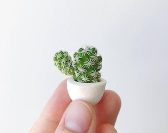 Mini Cactus and Mini Planter - Lino Mini Cactus Kit, Handmade Ceramic Planter, Mini Cactus, Cactus Plant, Cactus Planter, Planter
