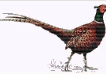 CROSS STICH KIT - Pheasant 26cm x 15 cm