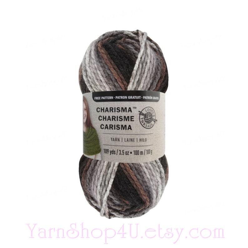 Black Raspberry lot of 2 109 yds each Loops /& Threads Charisma bulky yarn