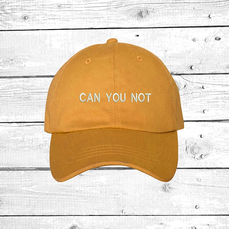 be63a19fcf3 CAN YOU NOT Dad Hat Mean Girls Hat If You Can Read This