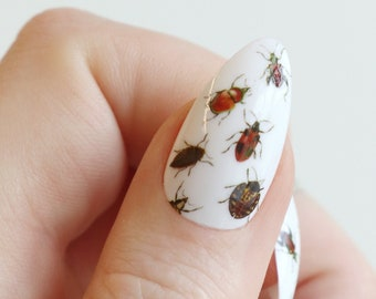 Beetle nail tattoos / beetle nail decals / nail art / beetle nails / insect nail decals / cute nails / Halloween nail decals / self care