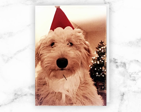 Goldendoodle Christmas Card, Dog X-mas Card, Print Your Own, A1 or A2 Card, Instant Download, Printable Christmas Card, Templett