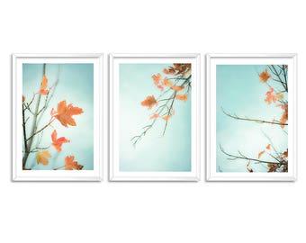 3 sets Autumn leaves photography , wall art, wall decor