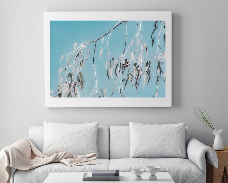 Blue eucalyptus photograph Australian wall art Wall decor wall print