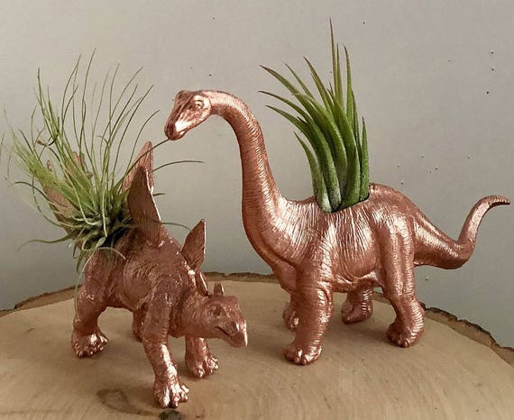 Small Light Green Gold Dinosaur Planter With Budding Air Plant Valentine S Gift Home Decor Di