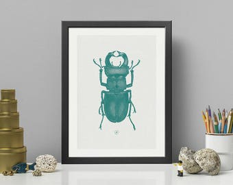 STAG BEETLE   Green Screen Print with a pinch of metallic effect