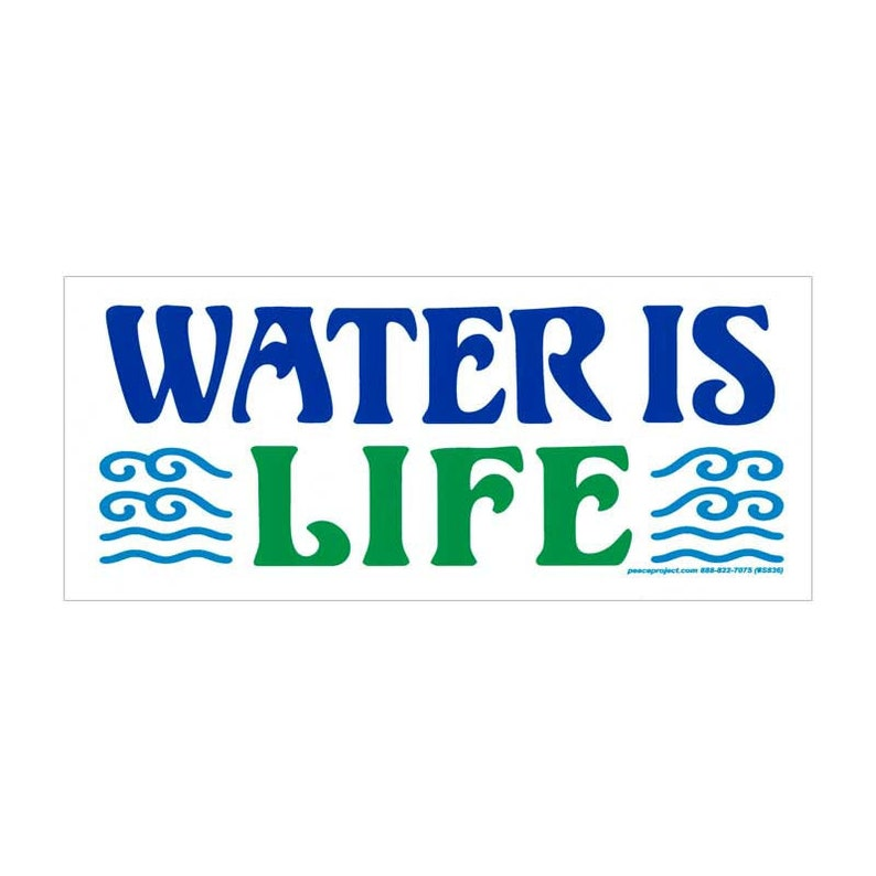Decal Small Environmental Bumper Sticker We All Live Downstream