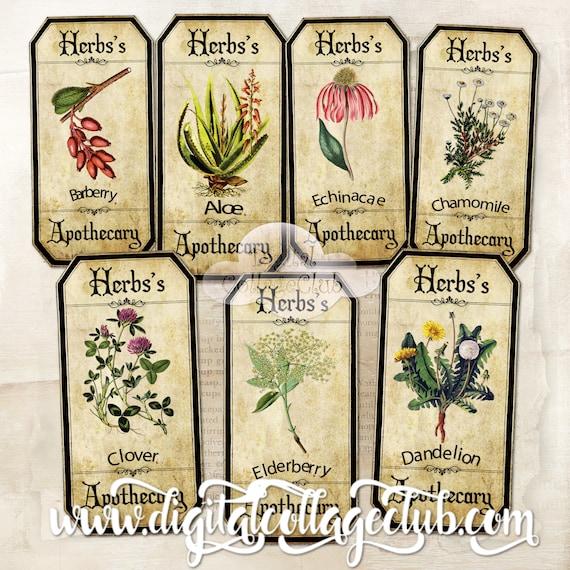 Vintage Botanical Flowers Bookmarks Images for Bookmark Cardmaking Paper Craft Tags ATC Journalling Penpal Journaling Decoupage Labels