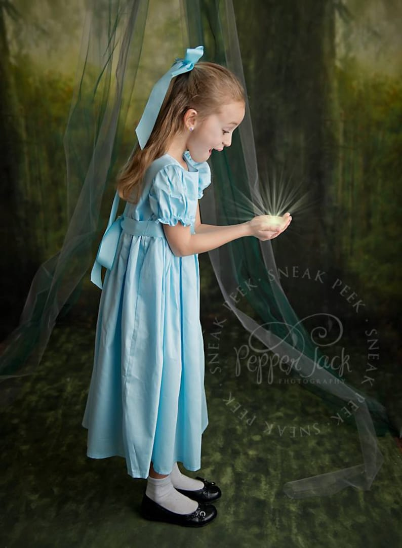 bff5777d5e Wendy Darling Dress Wendy Costume Wendy Dress Wendy outfit
