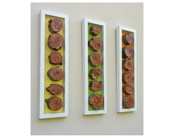 Modern, Reclaimed, Wood Slices Wall Art