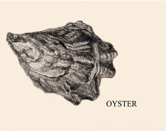 Oyster card original illustration Design B