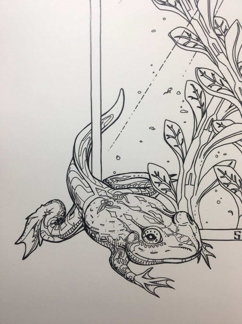 Amphibians  Art Print / Frog / Nature / Forest / Sci-Fi Toad image 0