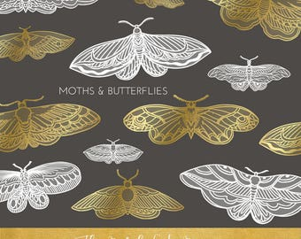 Moth & Butterfly Clipart Set - In Gold And White With Some Transparency - INSTANT DOWNLOAD - 24 .PNG Files
