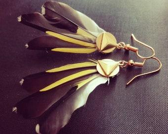 Elegant goldfinch feather earrings.