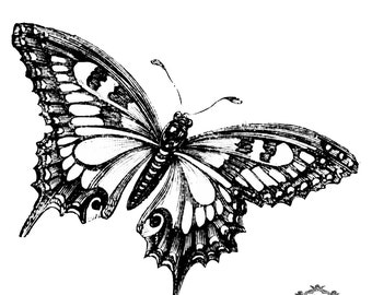 Beautiful Black and white Butterfly, Butterfly tattoo, Body Art, Skin Art, Temporary Tattoo,