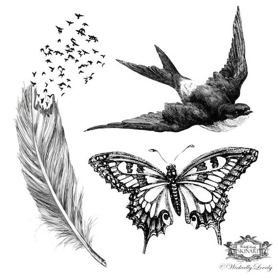 Ailes Assorted Set 2 Plume Avec Tatouage Oiseaux Papillon Etsy