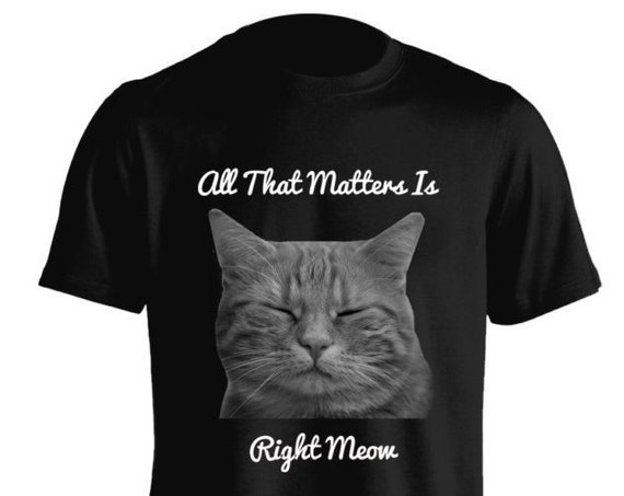 All That Matters Is Right Meow For Men Women Teens Unisex Adult Apparel Great Gift Idea Comes in Assorted Colors
