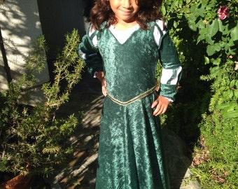 Merida Inspired dress (Brave)