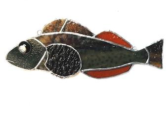 Brown fish suncatcher- male kelp grennling