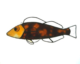 Yellow fish suncatcher- female kelp grennling