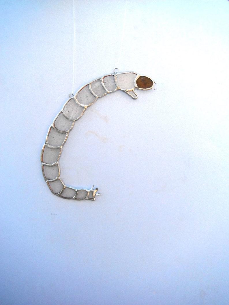 Chironomid midge larvae suncatcher