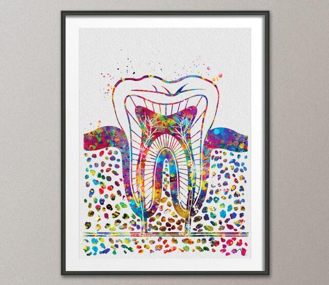Backenzahn Aquarell Druck Zahn anatomische Art Dental Klinik | Etsy