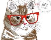 Hipster Orange Tabbie Cat...