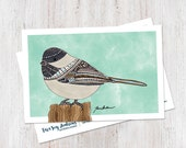 Chickadee Illustrated Postcard