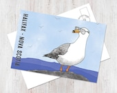 Halifax Nova Scotia seagull illustrated postcard