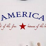 Land of the Free -Home of the Brave - Vinyl Decal