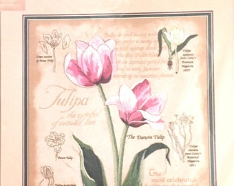 Dimensions Sunset Crewel Kit - Botanical Tulips - from 1999
