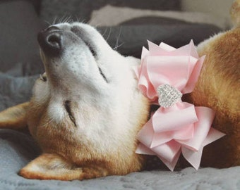 Boutique Bow Dog Collar with Sparkly Rhinestone Heart