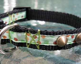 Little Toughie Studded XS Dog Collar