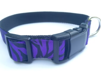 Purple Zebra Striped Dog Collar