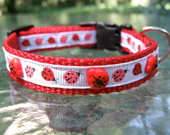 Little Ladybug XS Dog Collar