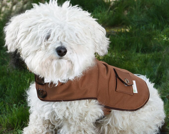 Featured listing image: The Brown Dog Raincoat, you choose lining!
