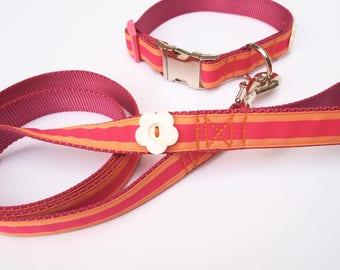 Preppy Pink stripe dog collar and leash set