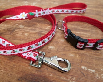 Sweet Strawberry Red Dog Collar and Leash Set