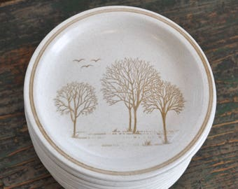 Can't see a forest, but do see some trees and birds......Set of 15 vintage ironstone side plates - Made in England