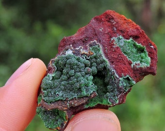 """Conichalcite Mineral from Mexico, 1.8"""" Inch 79 Grams"""