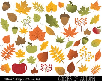 Autumn Leaf Clipart, Fall Leaves Clip Art, Thanksgiving, Branches, Berries, Acorn, Colorful - Commercial & Personal - BUY 2 GET 1 FREE!