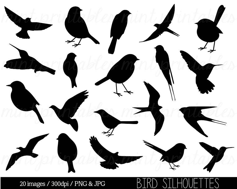 Bird Clipart Clip art Bird Silhouette Clipart Cute bird | Etsy