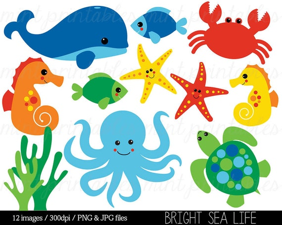 sea animal clipart under the sea baby sea creatures clip etsy rh etsy com sea animals clip art images sea animals clipart black and white