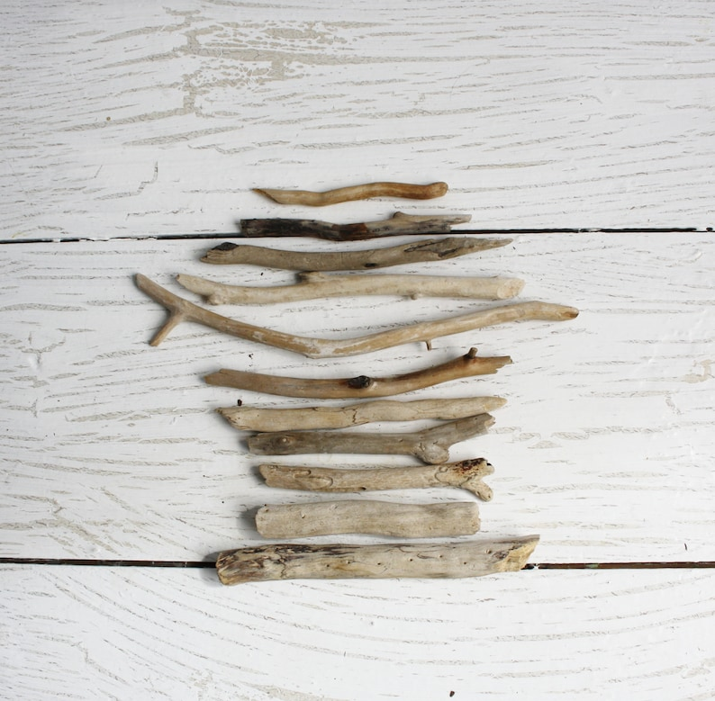 Beach Driftwoods for craft Sea wood 11 pieces Natural wood finds wave tumbled sun bleached